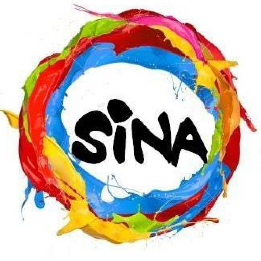 Sina From Marginalized Youth To Social Entrepreneurs